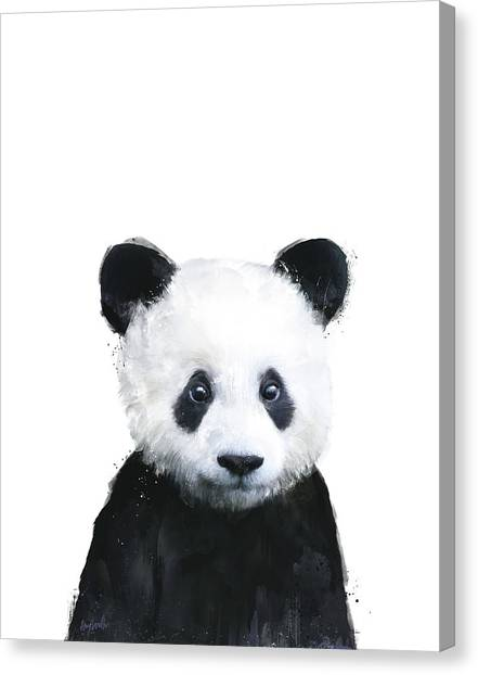 Bears Canvas Print - Little Panda by Amy Hamilton