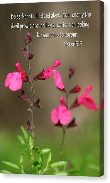 Little Pink Wildflowers With Scripture Canvas Print by Linda Phelps