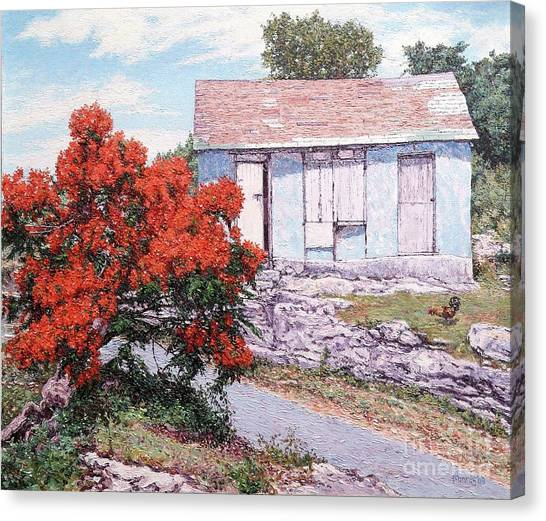 Little Poinciana Canvas Print