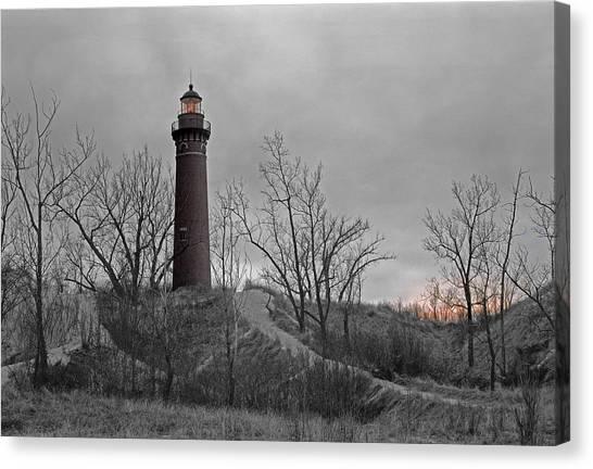 Little Point Sable Light Canvas Print