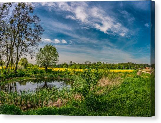 Little Pond Near A Rapeseed Field Canvas Print