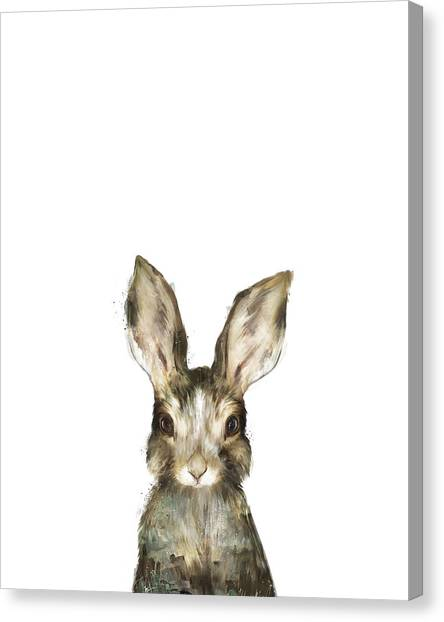 Rabbit Canvas Print - Little Rabbit by Amy Hamilton