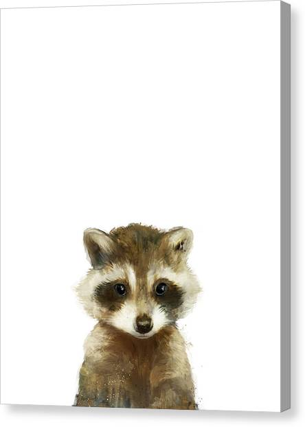 Raccoons Canvas Print - Little Raccoon by Amy Hamilton
