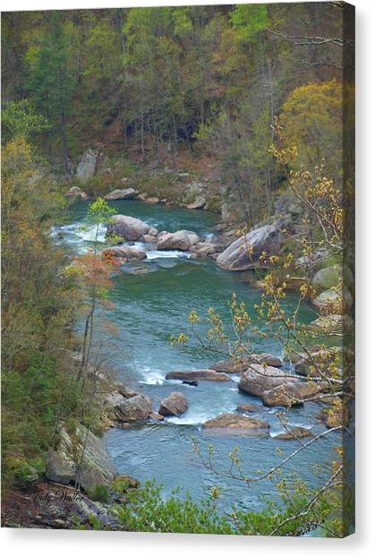 Little River Canyon Canvas Print by Judy  Waller