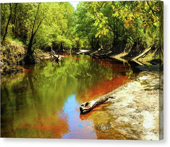 Iced Tea Canvas Print - Little Satilla River by Laura Ragland