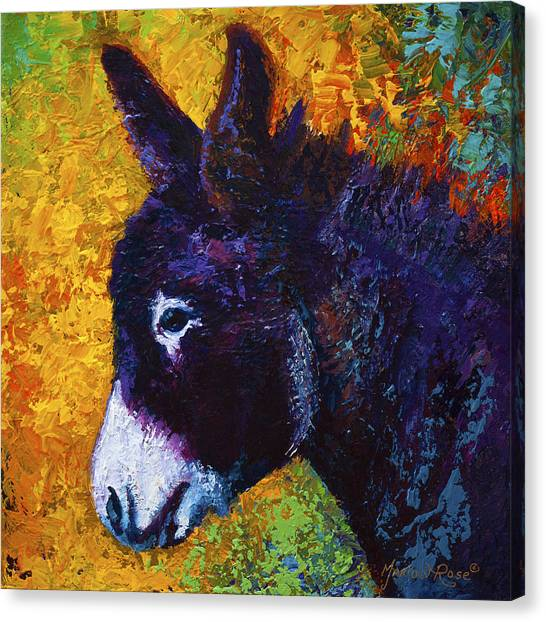 Donkeys Canvas Print - Little Sparky by Marion Rose