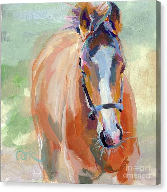 Thoroughbreds Canvas Print - Little Spider by Kimberly Santini