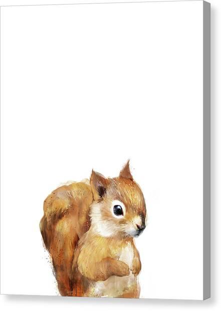 Squirrel Canvas Print - Little Squirrel by Amy Hamilton