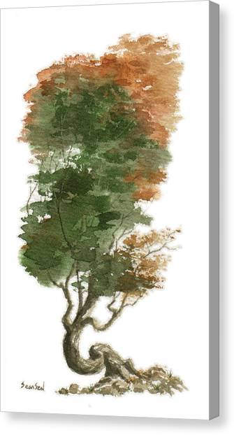 Little Tree 15 Canvas Print