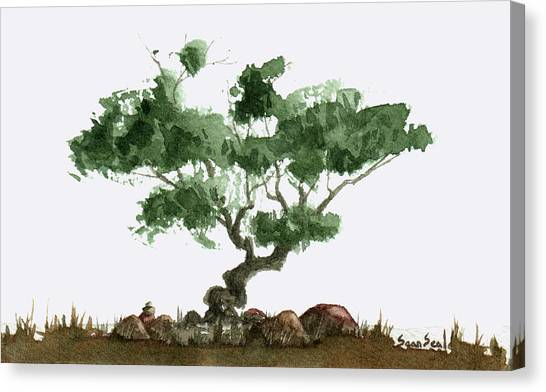 Little Tree 2 Canvas Print