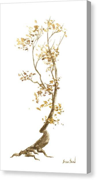 Little Tree 57 Canvas Print by Sean Seal