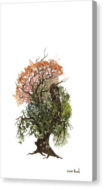 Little Tree 71 Canvas Print