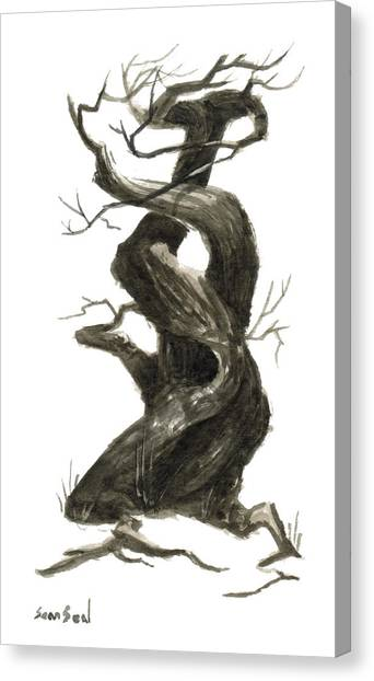 Little Tree 79 Canvas Print by Sean Seal