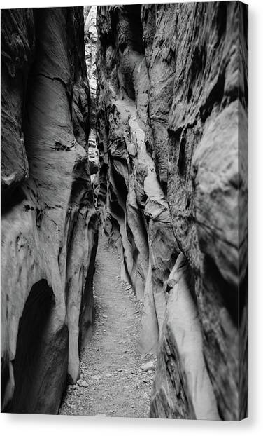 Little Wild Horse Canyon Bw Canvas Print