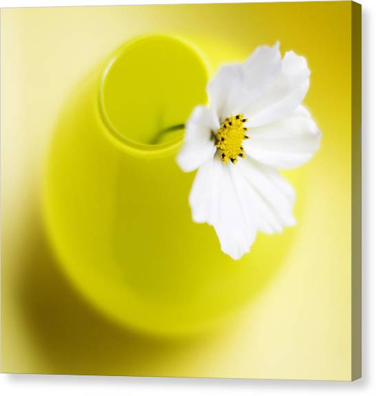 Flower Canvas Print - Little Yellow Vase by Rebecca Cozart