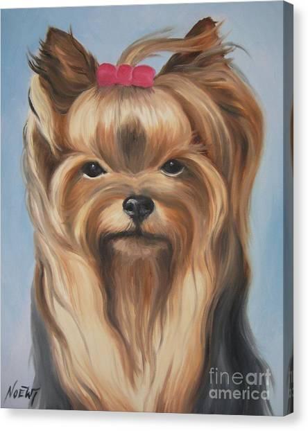 Little Yorkshire Princess Canvas Print