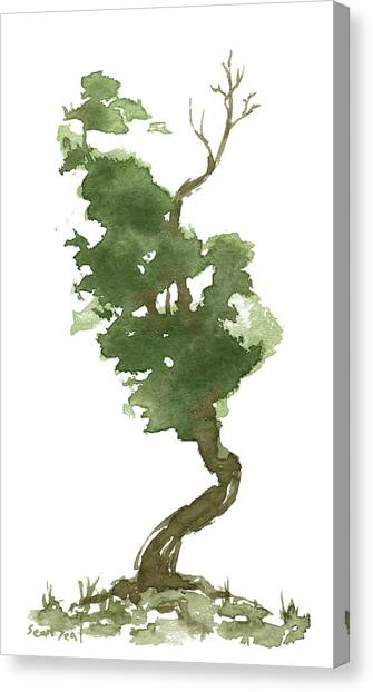 Little Zen Tree 177 Canvas Print