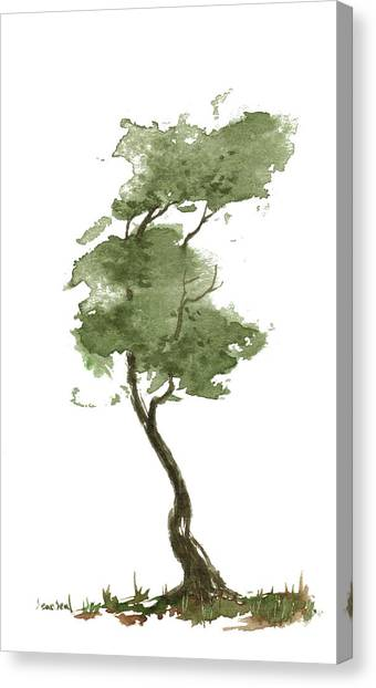 Little Zen Tree 206 Canvas Print