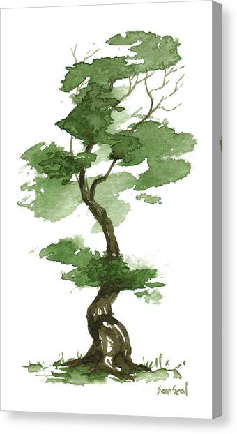 Little Zen Tree 208 Canvas Print
