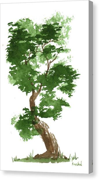 Little Zen Tree 311 Canvas Print