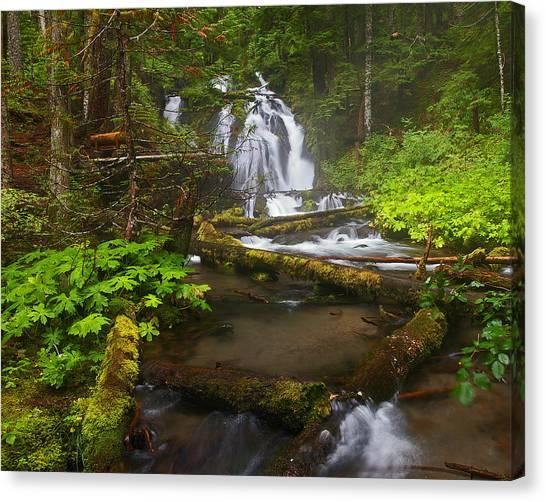 Little Zigzag Falls Canvas Print
