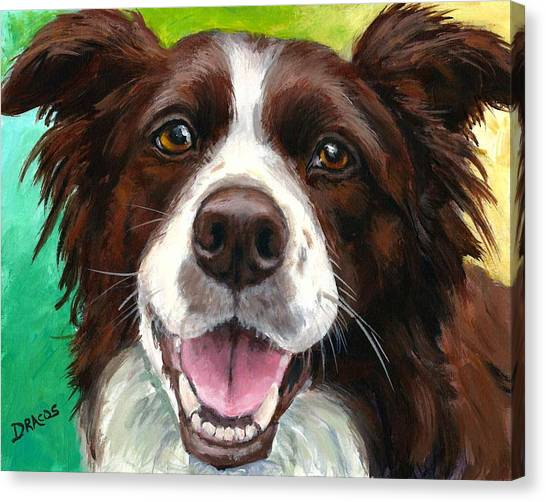 Border Collies Canvas Print - Liver And White Border Collie by Dottie Dracos