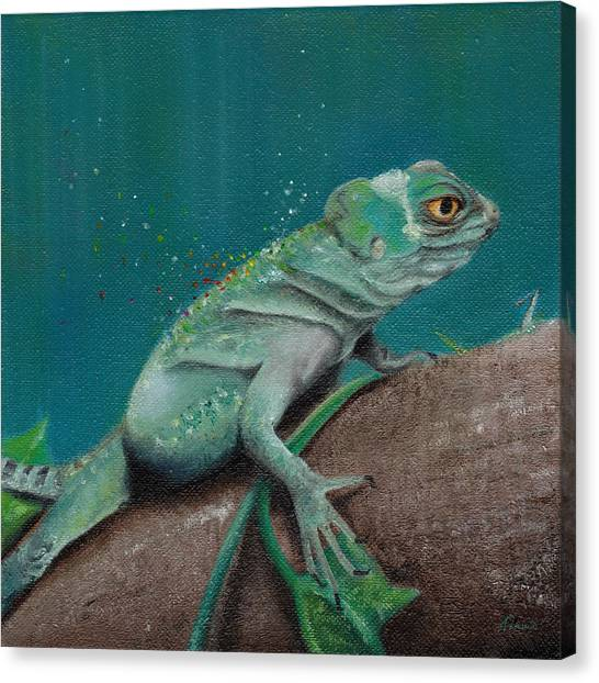 Iguanas Canvas Print - Lizard by Kathleen Wong