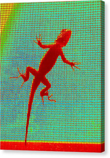 Lizard On The Screen Canvas Print