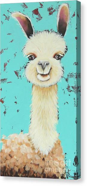 Llamas Canvas Print - Llama Sue by Lucia Stewart