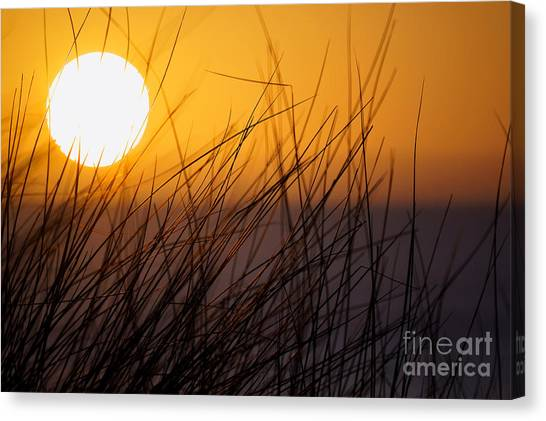 Llangennith Sun Canvas Print