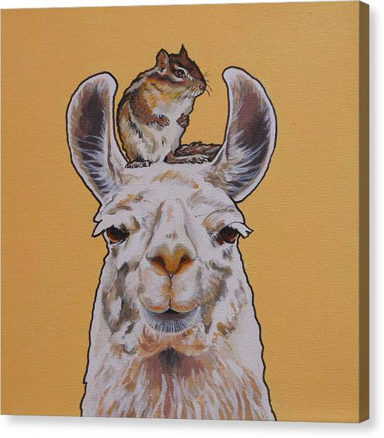 Llois The Llama Canvas Print
