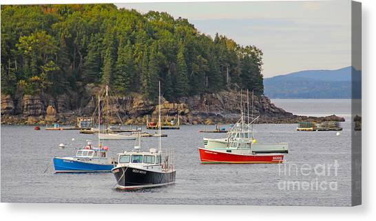 Lobster Canvas Print - Lobster Boats In Bar Harbor by Jack Schultz