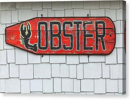 Lobster Paddle Canvas Print