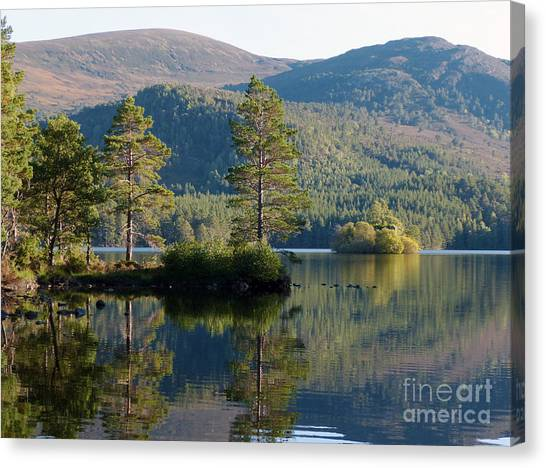 Loch An Eilein - Cairngorms National Park Canvas Print