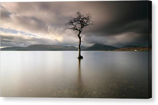 Loch Lomond Lone Tree Canvas Print
