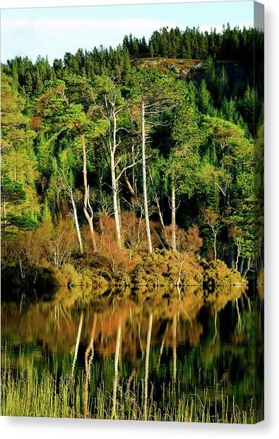 Glen Canvas Print - Loch Lundie by Smart Aviation