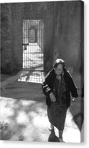 Locked The Gate Now Time To Get On With My Life Canvas Print by Jez C Self