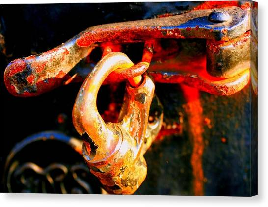 Locked Up Canvas Print by Susan Moore