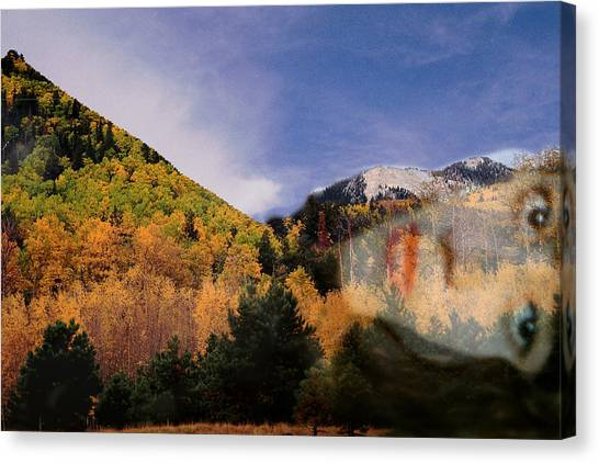 Lockett Meadow Looks Back Canvas Print