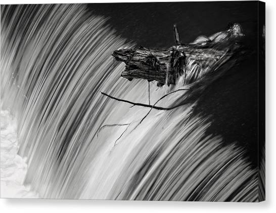 Log In The Falls Canvas Print