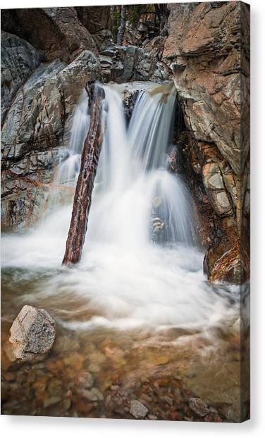 Log In The Waterfall Canvas Print