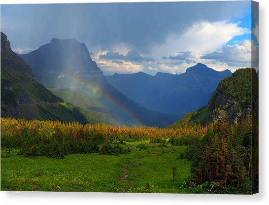 Cloud Forests Canvas Print - Logan's Rainbow by Ryan Scholl