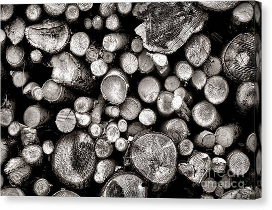 Deforestation Canvas Print - Logged In by Olivier Le Queinec