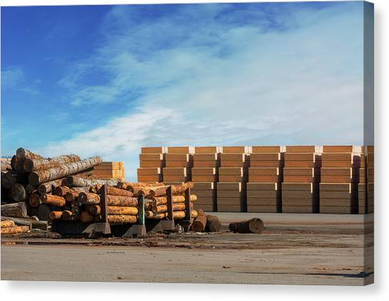Canvas Print - Logs And Plywood At Lumber Mill by David Gn