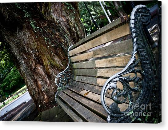 Lone Bench In The Park Canvas Print