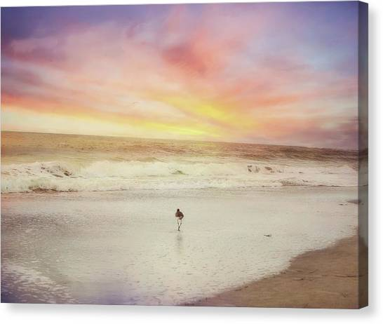 Lone Bird At Sunset Canvas Print