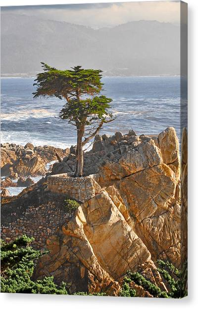 Pacific Coast Canvas Print - Lone Cypress - The Icon Of Pebble Beach California by Christine Till