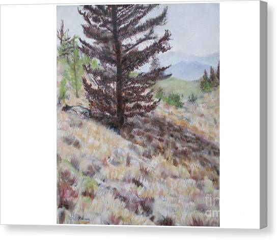 Lone Mountain Tree Canvas Print by Hal Newhouser