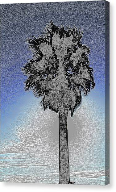 lone Palm 2 Canvas Print
