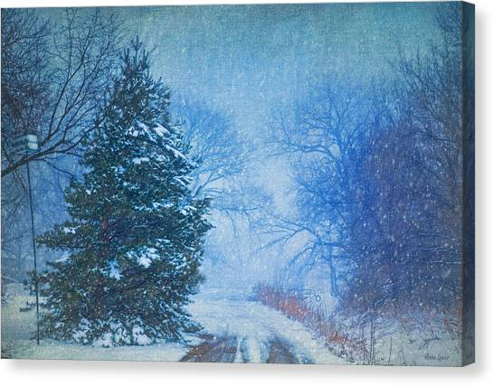Lone Snowy Lane Canvas Print
